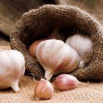 настойка чеснока против фитофторы картошки