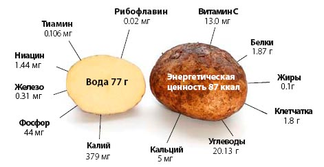 ролезные вещества в картофеле фото