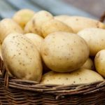 вред и польза картошки