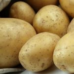 картошка лилея фото