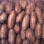 картошка тирас фото