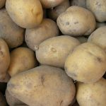 картошка эль мундо фото