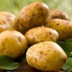 фото петровской картошки