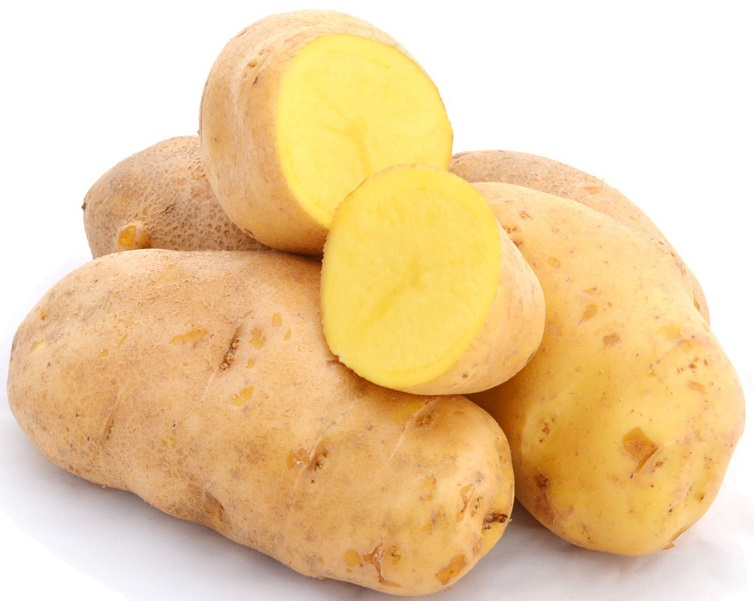фото сорта картофеля агрия