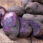 картошка аметист фото