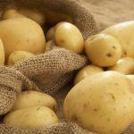 фото картошки танай