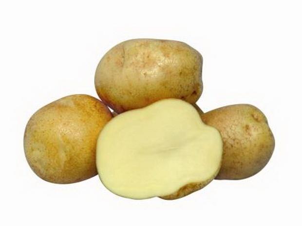фото сорта картофеля евростарч