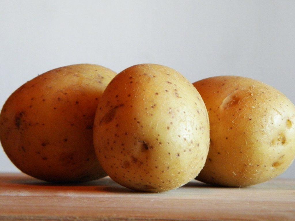фото сорта картофеля лакомка