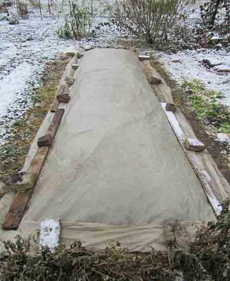 фото посадки картофеля под зиму