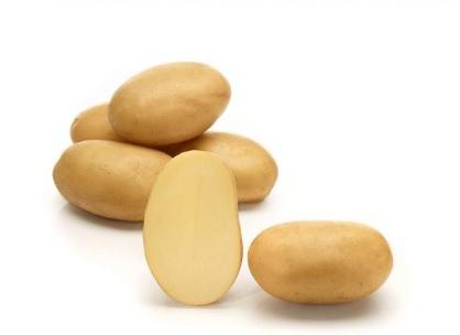 фото сорта картофеля 7 фор 7
