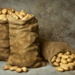 При какой температуре замерзает картошка в сарае