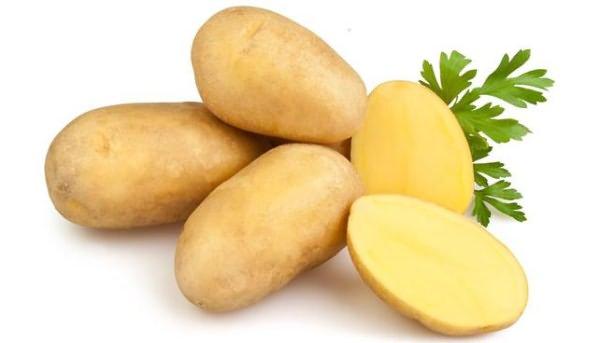 фото сорта картофеля алова