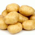 фото картошки Батя