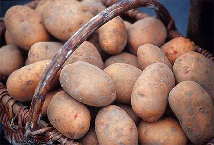 видеть во сне крупную картошку