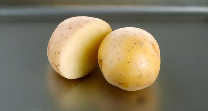 фото сорта картофеля Аспия