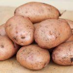 фото картошки браво
