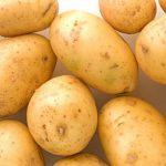 фото картошки брянская новинка