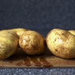 картошка вализа фото