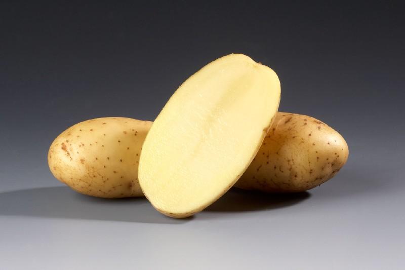 фото картошки ветразь