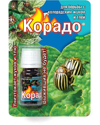 фото препарата корадо от колорадского жука