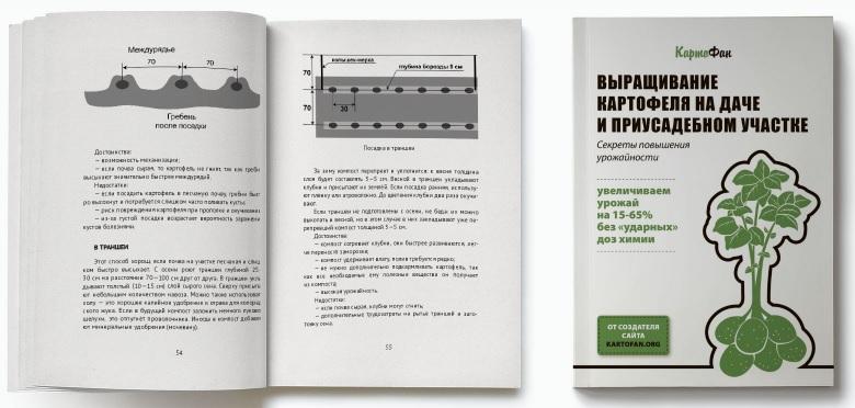 фото книги картофана в развернутом виде