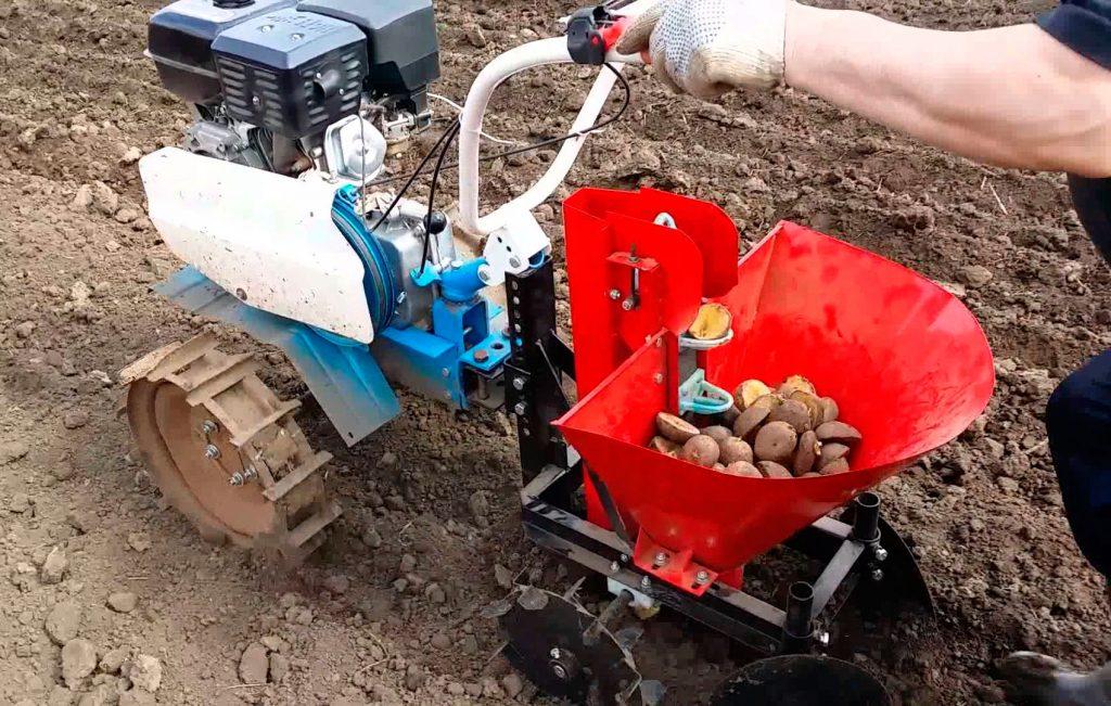 фото процесса посадки картофеля мотоблоком