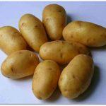фото картошки Дебрянск