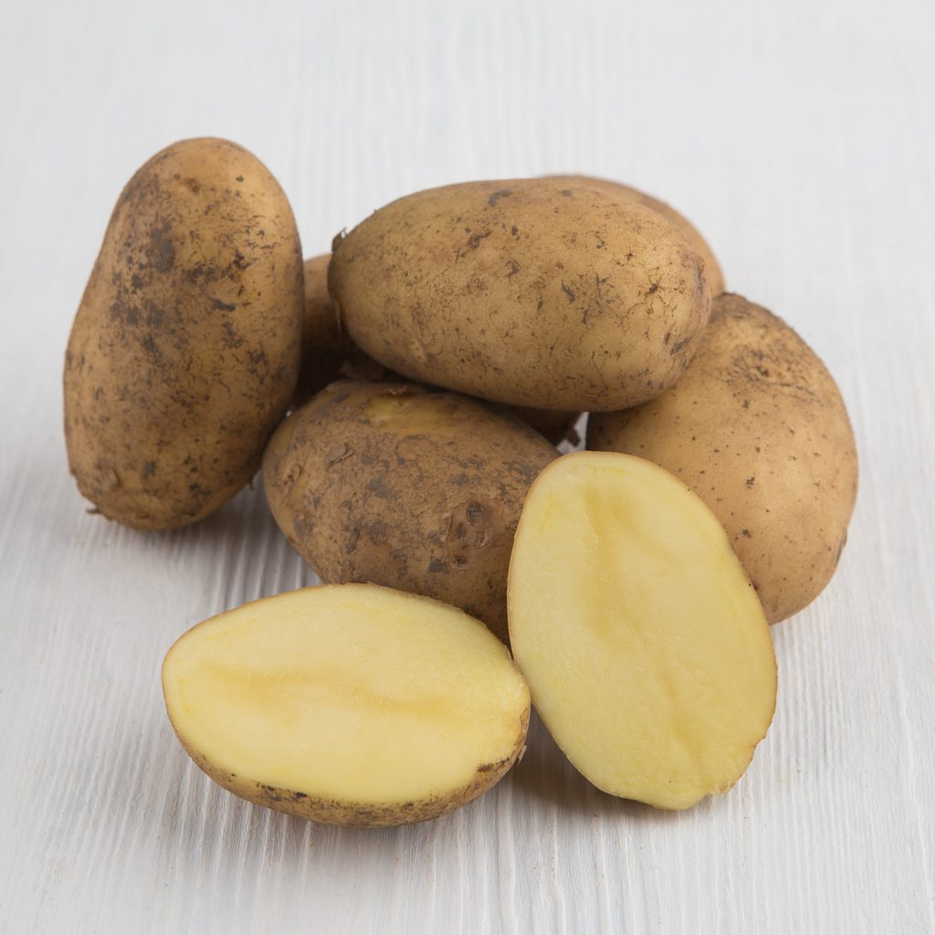 фото сорта картофеля Дебрянск