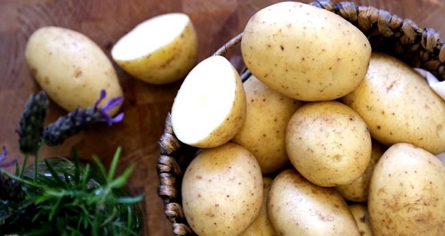 фото сорта картофеля деликат