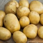 фото картошки искра