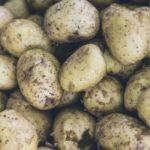 фото картошки зырянская