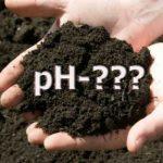 какая оптимальная кислотность почвы для картофеля