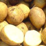 фото картошки Карузо