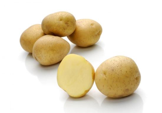фото сорта картофеля Карузо