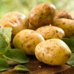 фото картошки Кортни