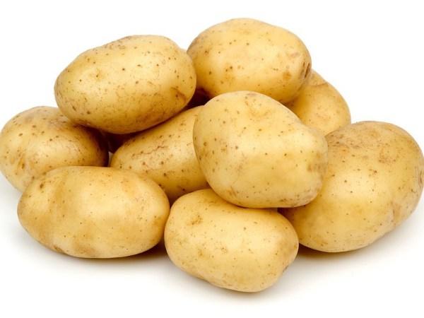 фото сорта картофеля Кортни