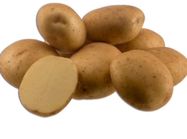 фото сорта картофеля маламур