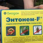 ghtgfhfn Энтонем-F от колорадского жука