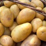 фото картошки мастер