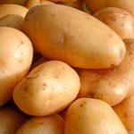 фото картошки Монт Блан