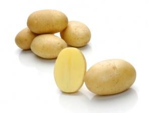 фото сорта картофеля Миранда