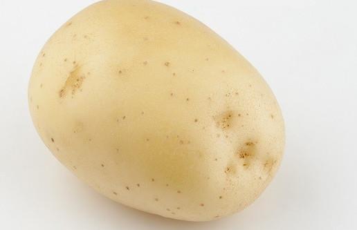 фото сорта картофеля мостовский