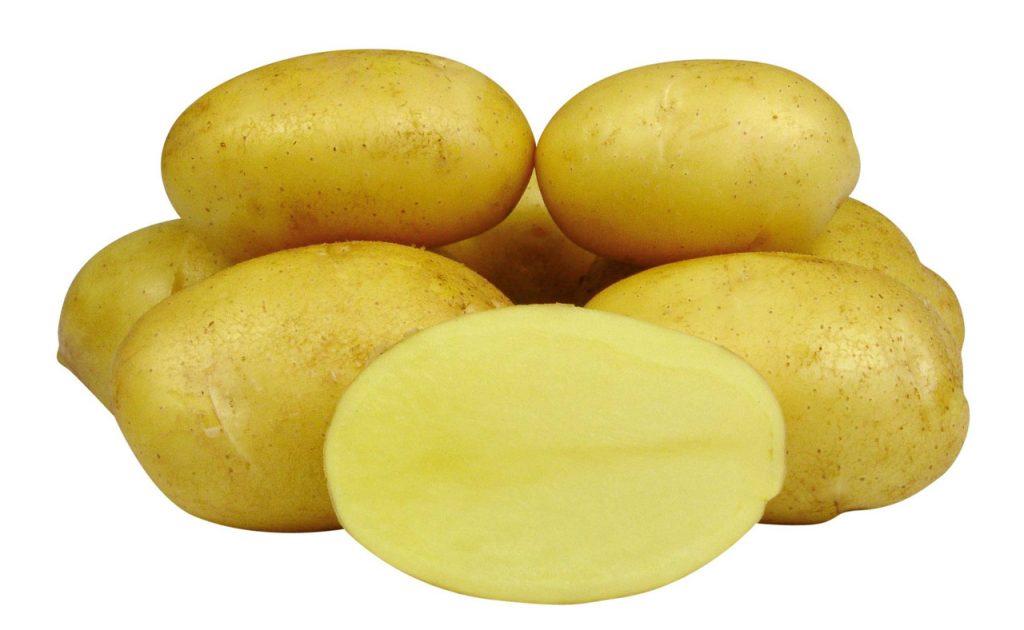 фото сорта картофеля Нальчикский