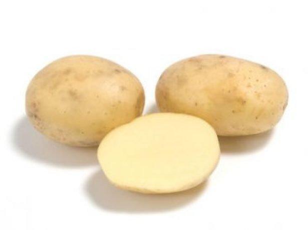 фото сорта картофеля Нарымка