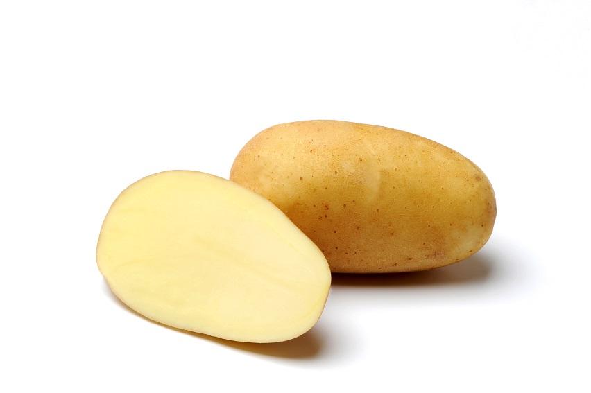 фото сорта картофеля Океания