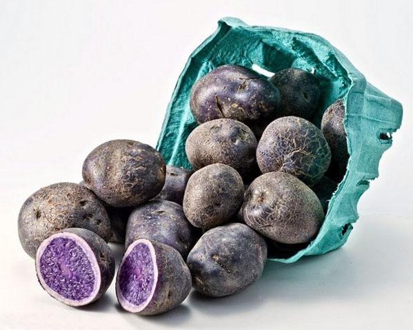 фото картофеля Purple Peruvian