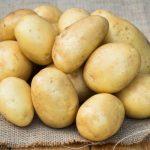 фото картошки Повировец