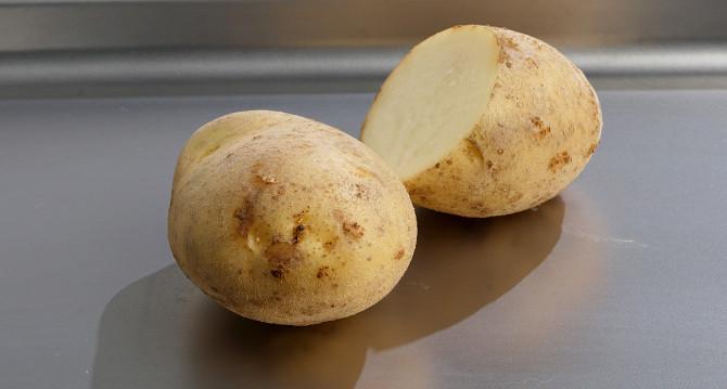 фото сорта картофеля Повировец