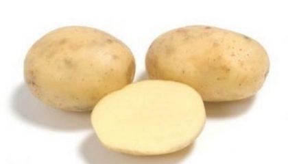 фото приобской картошки