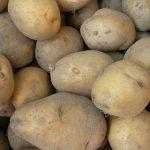 фото картошки русский сувенир